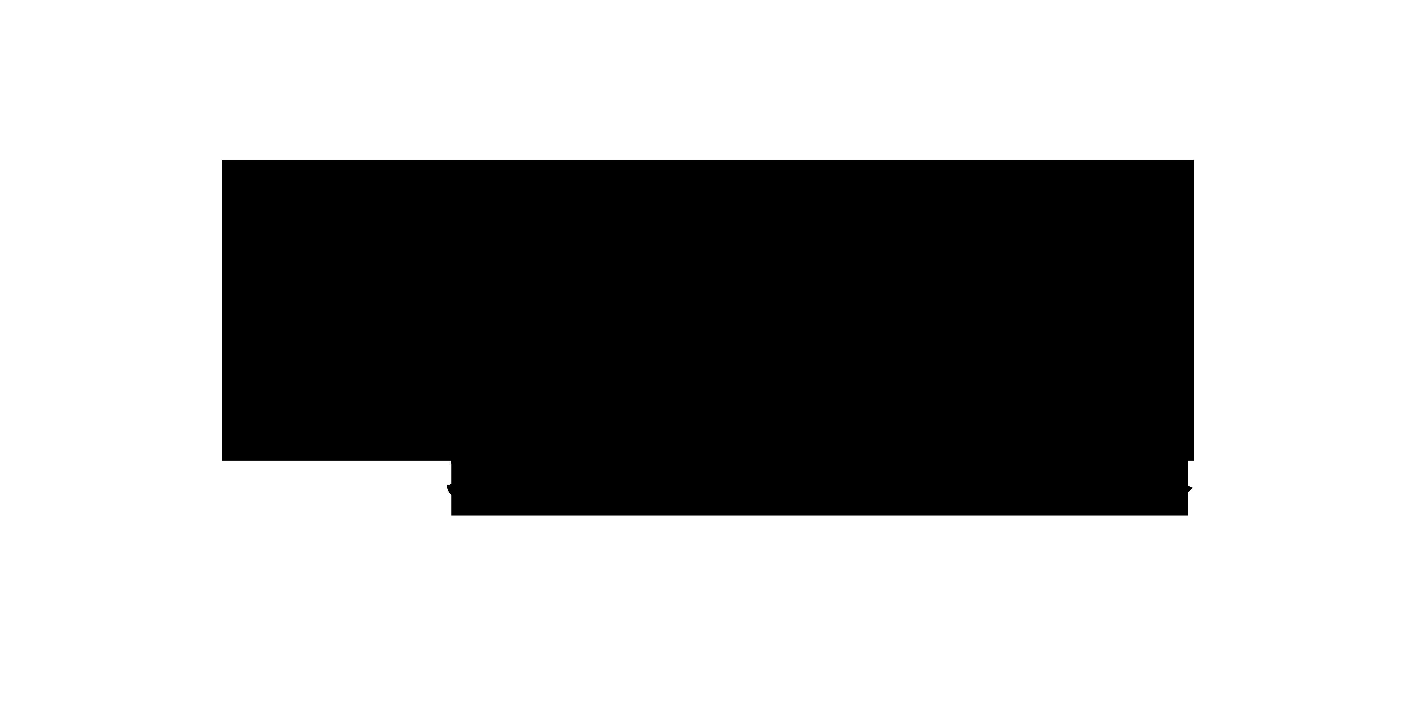 logo ryczka studio kreatywne producent ręcznie szytych eko torebek z kraft papieru washpapa